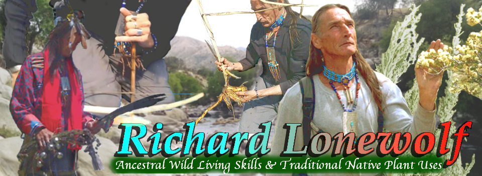 Richard Lonewolf NEW HEADER
