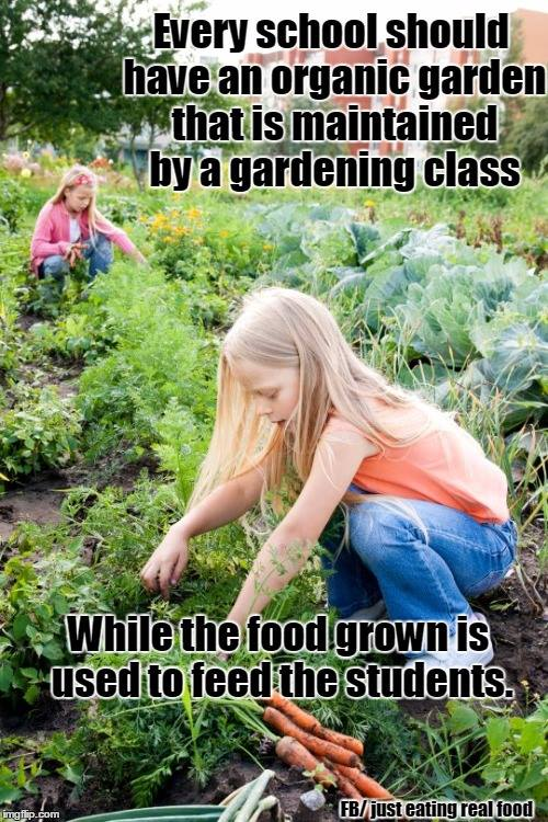 Every school should garden