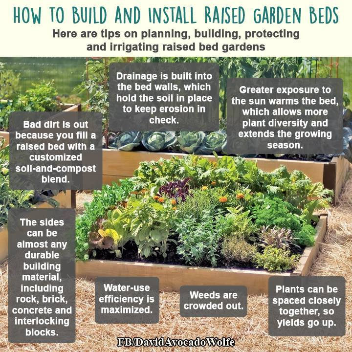 Raised bed garden instructions
